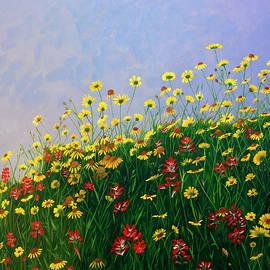 Shylaja Nanjundiah - Floral Meadow