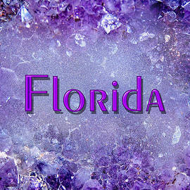 Florida by Donna Proctor