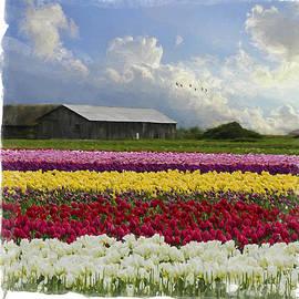 Jordan Blackstone - Flower Art - Hope Is