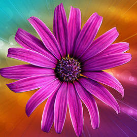 Bill Tiepelman - Flower Empowered