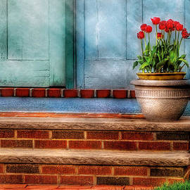 Mike Savad - Flower - Tulip - A pot of tulips