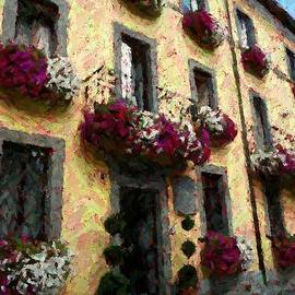 Flowers in Lazio by Barbie Corbett-Newmin