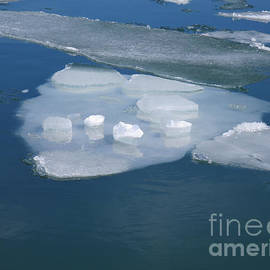 Flowing Ice Floes by Ann Horn