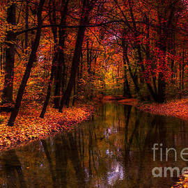 Hannes Cmarits - flowing through the colors of fall