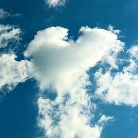 Cynthia Guinn - Fluffy Heart