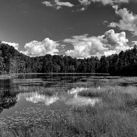 Fly Pond Panorama - Old Forge NY by David Patterson