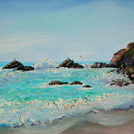 Asha Carolyn Young - Foamy Ocean Waves and Sandy Shore