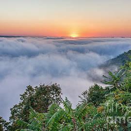 Fog At Garvin Heights IIi by Kari Yearous