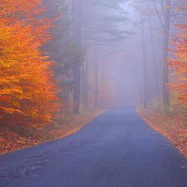 Foggy Fall Road by Mahlon Sabo