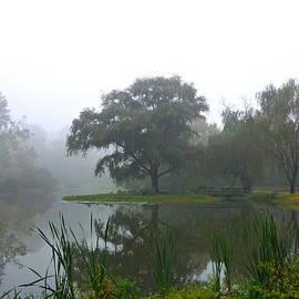 Foggy Morning At The Willows by Byron Varvarigos