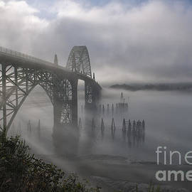 Foggy Morning in Newport by Sandra Bronstein