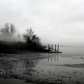 Margie Avellino - Foggy Pier in January