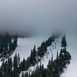 Eti Reid - Foggy ski resort