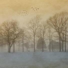 Foggy Sunset by Cathy Kovarik