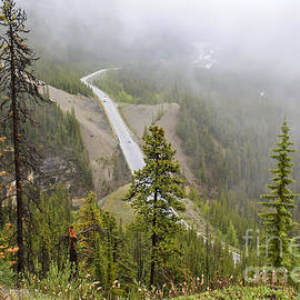 Teresa Zieba - Foggy View from Icefields Parkway
