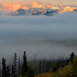 Ron Day - Foggy Vista