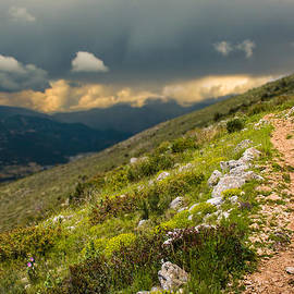 Nila Newsom - Foot path into the French Alps