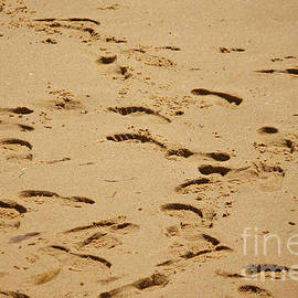 Footprints In The Sand by Tom Doud