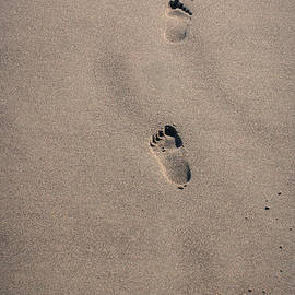 Alexander Ferguson - Footprints In Wet Sand