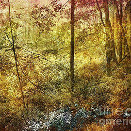 Kathi Mirto - Forbidden Forest