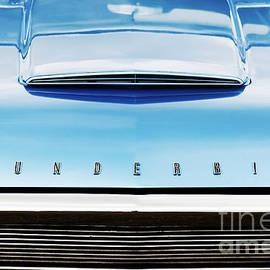 Tim Gainey - Ford Thunderbird