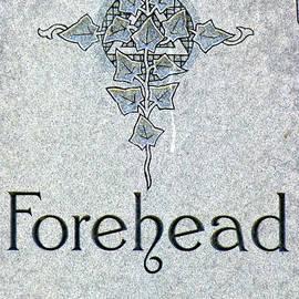 Forehead Headstone by Jeff Lowe