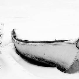 Forgotten by Inge Riis McDonald