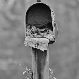 Forgotten Mail by Cynthia Guinn