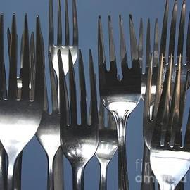 Stephen Thomas - Forks