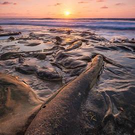 La Jolla - Hospital Point Fossil by Alexander Kunz