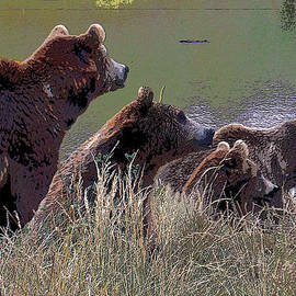 Four Bears by Michele Avanti