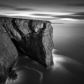 Dave Bowman - Fowlsheugh Cliffs