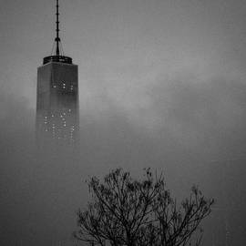 Kendell Timmers - Freedom in Fog 3