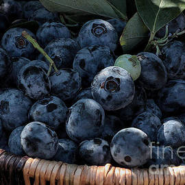 Luv Photography - Fresh Blueberries Close Up in a Basket
