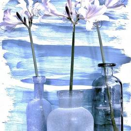 Marsha Heiken - Frilly Lilies