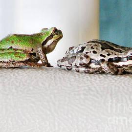 Rory Sagner - Frog Flatulence - A Case Study