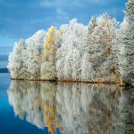 Ari Salmela - Frost and Reflections