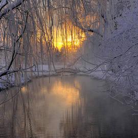 Dan Myers - Frosty Morn 2