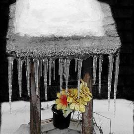 Davandra Cribbie - Frozen