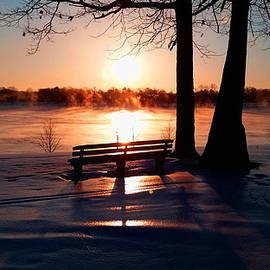 Michael Rucker - Frozen Park Benches