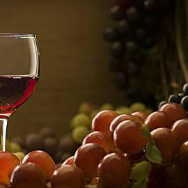Fruit of the Vine by Mark McKinney