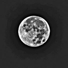 Full Moon Rising by Roxy Hurtubise