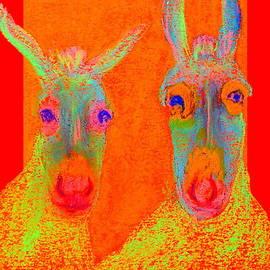 Funky Donkeys Art Prints by Sue Jacobi