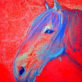 Funky Handsome Horse Blue by Sue Jacobi