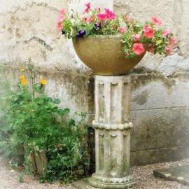 Lainie Wrightson - Garden Flowers