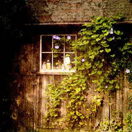 Garden hide away by Jeff Folger