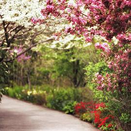 Jessica Jenney - Garden Path