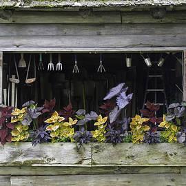David Freuthal - Garden shed window