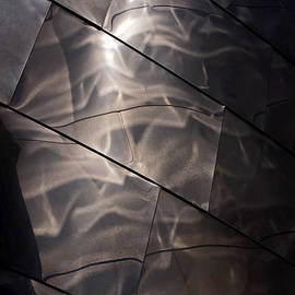 Gehry Magic by Rona Black