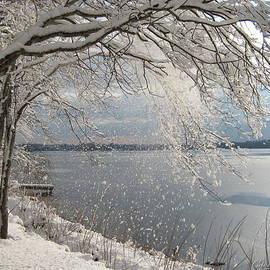 Gentle Winter Morning by Cindy Greenstein